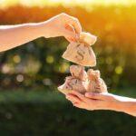 Geld-lenen-bestedingsdoel
